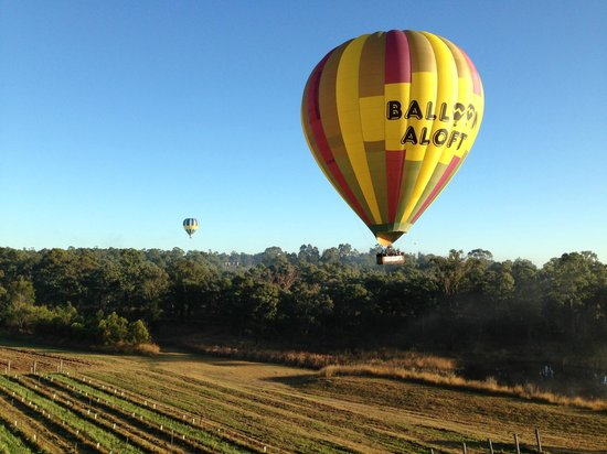 Balloon Aloft Hunter Valley Day Tours : August 24th 2013