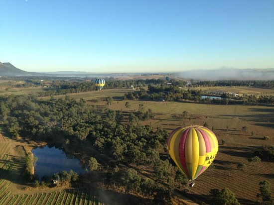 Balloon Aloft Hunter Valley Day Tours : Over the vines