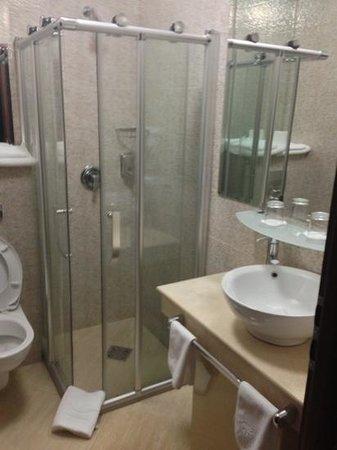 Hotel Apolodor: bathroom