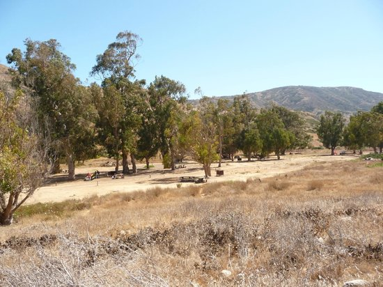 Scorpion Ranch Campground: Upper loop campground