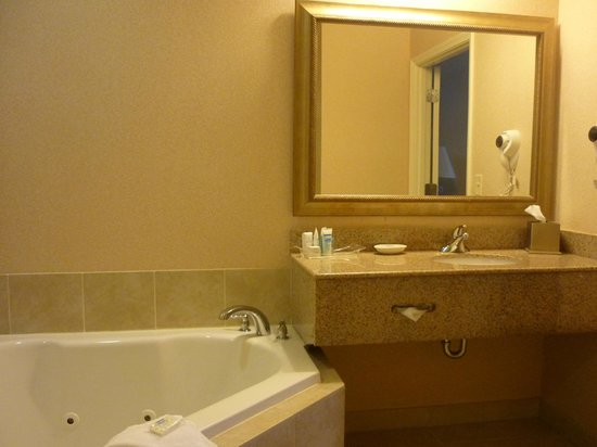 Inn at USC Wyndham Garden: Bathroom