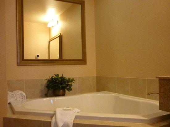 Inn at USC Wyndham Garden : Whirlpool hot tub