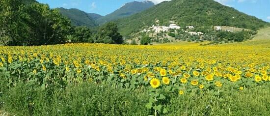 Borgo d'Anchise : panorama meraviglioso.