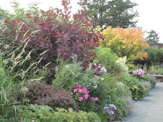 Holehird Gardens: Entrance to the walled garden