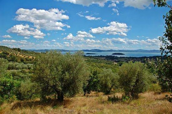 Locanda del Galluzzo : Il lago dal Galluzzo