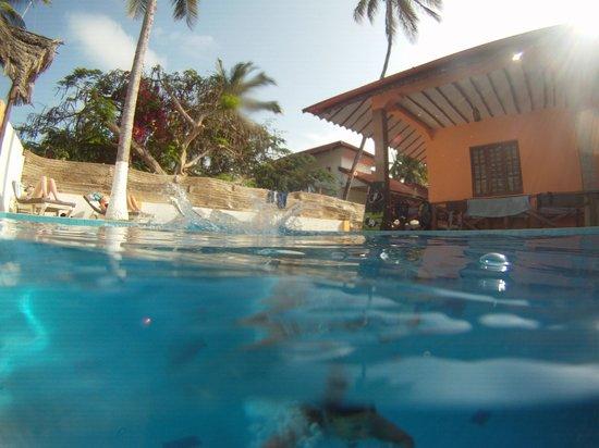 Hakuna Shida Guesthouse : Pool