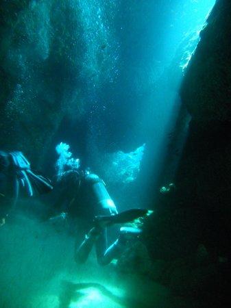 Nautisub Diving Center: Grotta
