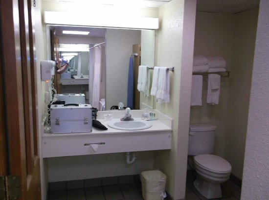 Quality Inn & Suites at Dollywood Lane : Vanity