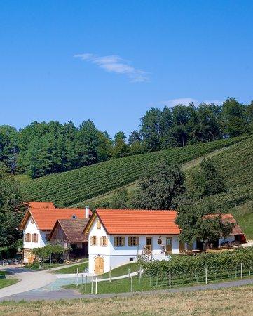 Eltendorf, Austria: Eigener Heuriger in den Weingärten
