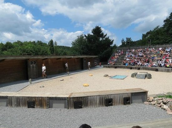 Parc Animalier de Courzieu : l'amphiteatre (spectacle rapaces)