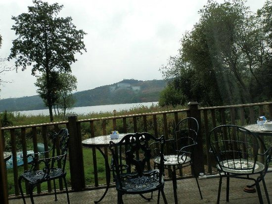 Wee Blether Tea Room: view from inside tearoom