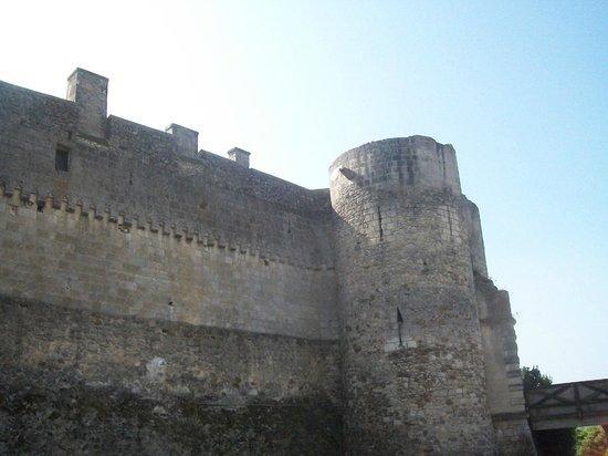 Musée de la Préhistoire: Château vu des douves