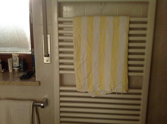 Hotel Regglbergerhof: asciugamano rotto