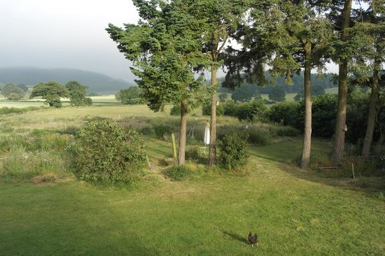 Hopton House Bed and Breakfast: Early morning - lovely