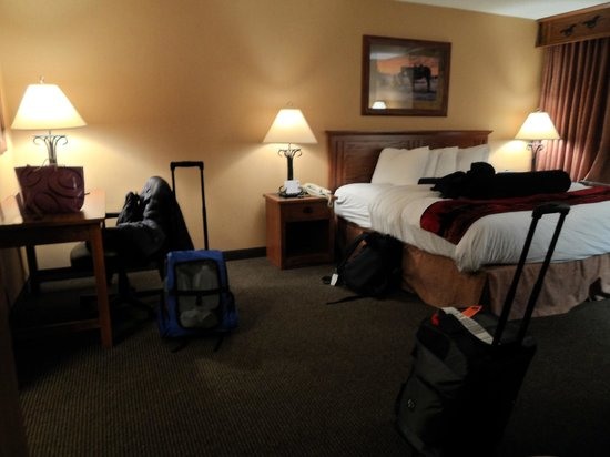 Best Western Plus Kelly Inn & Suites: bedroom area