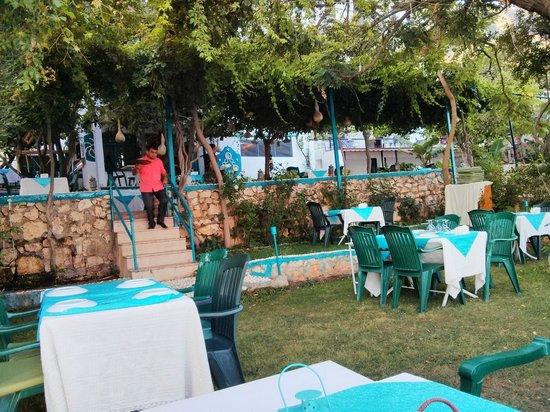 Sardunya Otel: Bahçede Akşam yemeği balık olarak Sokar tavsiye