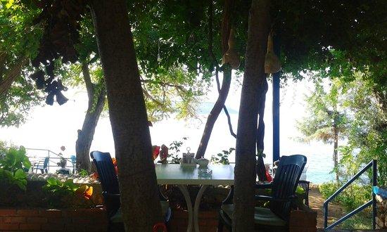 Sardunya Otel: Kahvaltı