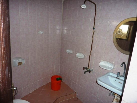 Visitor's Inn Hotel: bagno