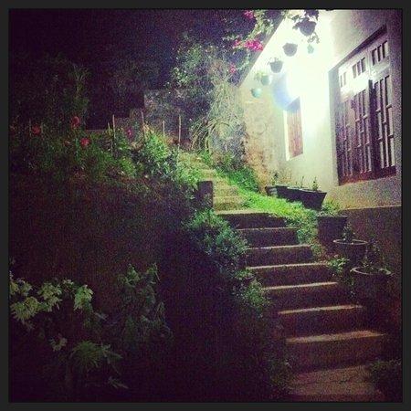 Kandy Guest House: giardino in ingresso