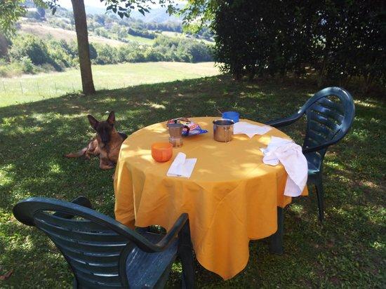 Valle Verde Agriturismo : giardinetto