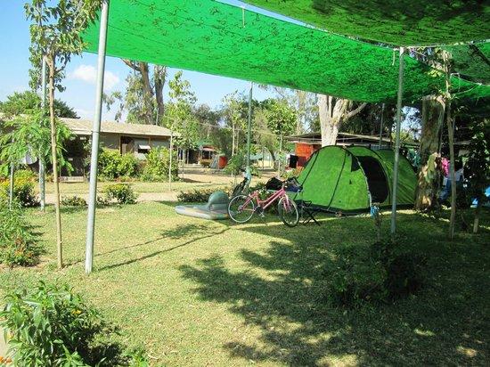 Camping Valle Niza Playa : nostra piazzola