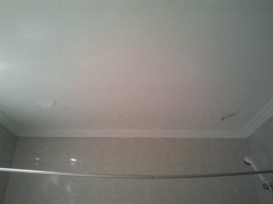 Gran Regente Hotel: techo sobre la ducha