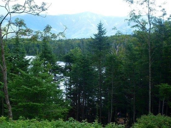 Franconia Notch State Park: Glimpse of lake