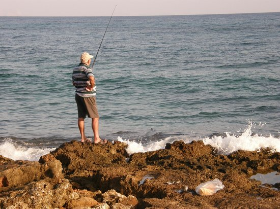 Dessole Malia Beach Hotel: Fishing indeed, I wonder