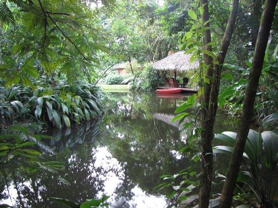 Hacienda La Isla Lodge: Tuin.