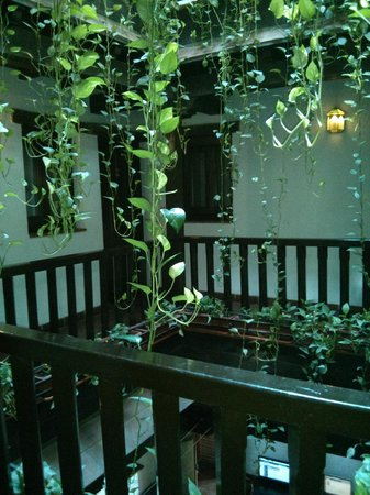 Oasis Backpackers' Hostel Granada: Atrium in middle of Oasis