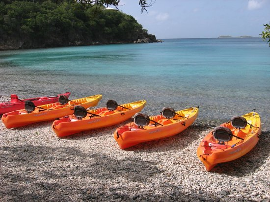 Hidden Reef Eco-Tours : Ready to paddle!