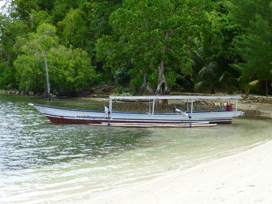 Bolilanga Island Resort: Barco del alojamiento