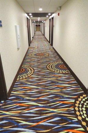 Hampton Inn Knoxville/Clinton I-75: Hallway