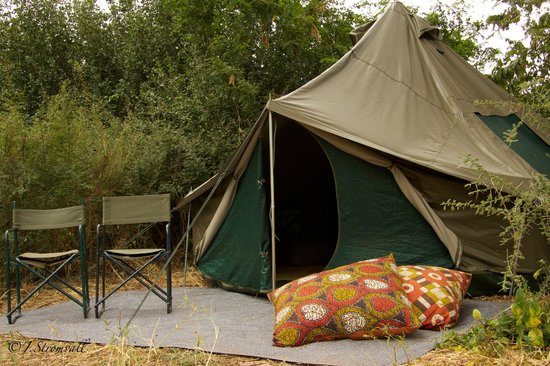 Wayo Africa: Wayo Green Camp in Manyara National Park