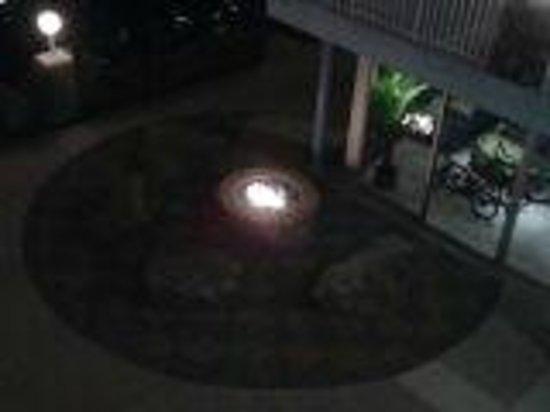Blue Palms: Fire Pit