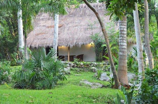 Hotel & Bungalows Mayaland照片