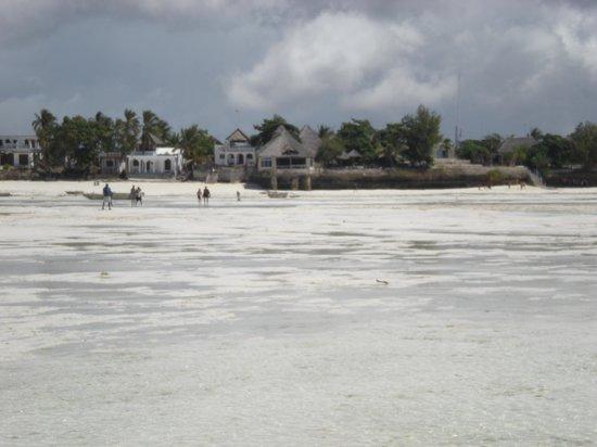 Coral Rock Zanzibar: View of hotel from sandbar (chapel)