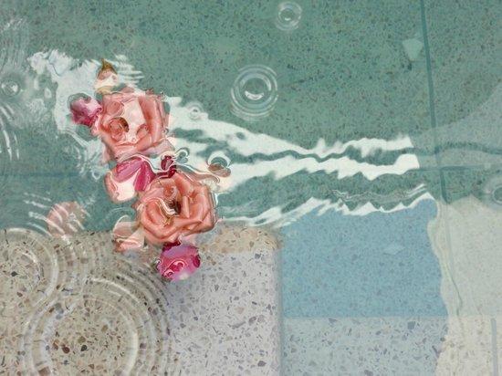 Riad Tamarrakecht : Rose in piscina