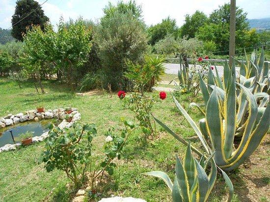 B&B La Casa Del Sole : I nostri clienti potranno godere della vista di un giardino assai rigoglioso