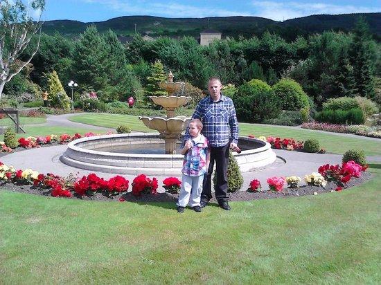 Carrickdale Hotel: garden