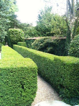 Coin herbes aromatique pour la citronnade maison for Jardin aromatique
