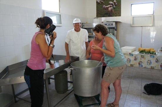 YLTour : Cheese making