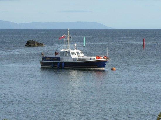 Seatrek Marine Services : Island Fox Islay