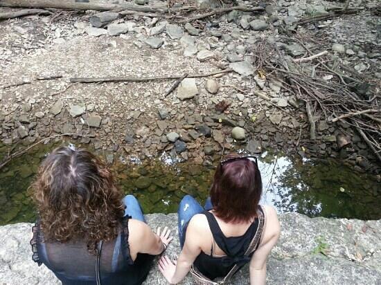 Indian Run Falls: Dry falls but still a hidden gorgeous gem!