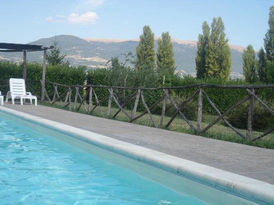 Agriturismo La Mora : piscina