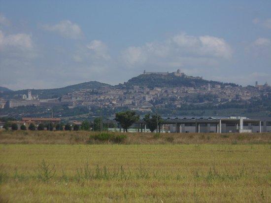 Agriturismo La Mora : panorama di Assisi  visto dal giardino
