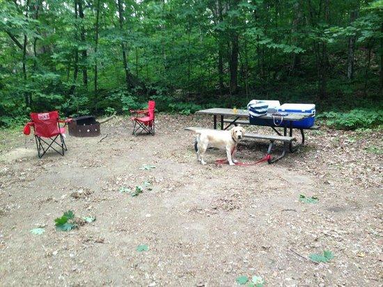 Arrowhead Provincial Park: our campsite
