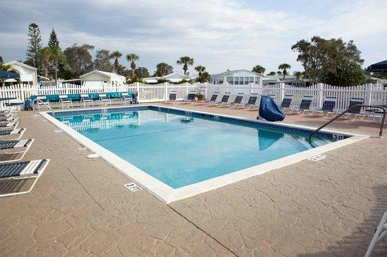 Indian Creek RV Resort : Heated Swimming Pool