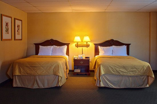 Comfort Inn Ballston: Double Double room