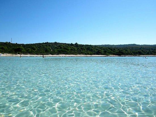 Sakarun Beach (Dugi Island): AGGIORNATO 2020 - tutto quello che c ...